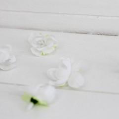 6 fleurs de cerisier blanches