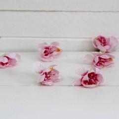 6 fleurs de cerisier roses