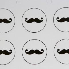 10 Autocollants Moustaches